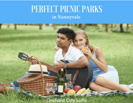 Picnic Spots in Sunnyvale